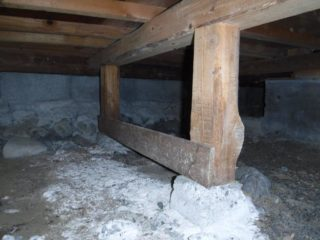 床下や外周に侵入や被害がないか調査いたします